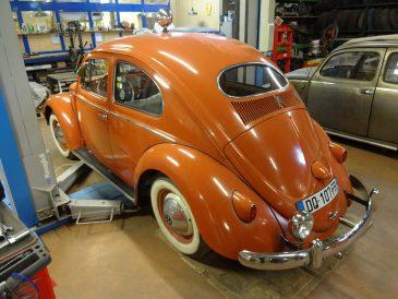 Coccinelle Volkswagen 1955-011